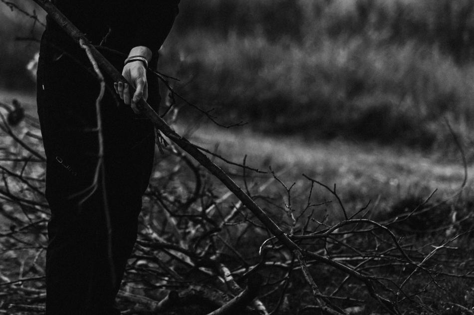ręce i gałęzie